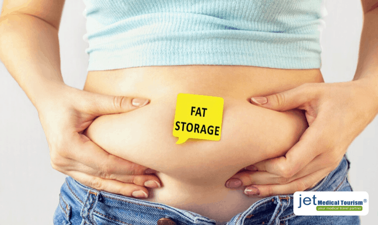 Fat Storage due to Excessive Insulin