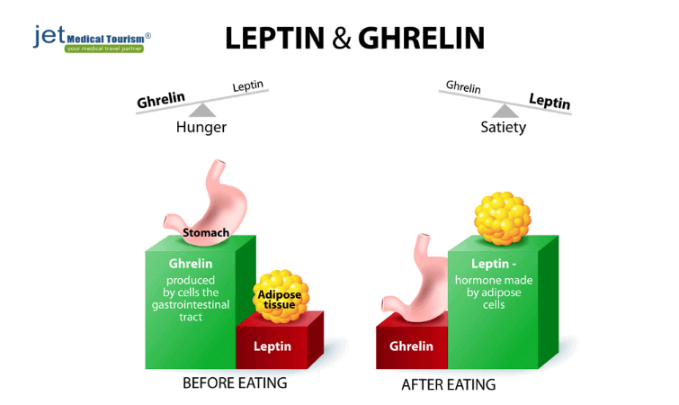 Role of leptin and ghrelin in obesity