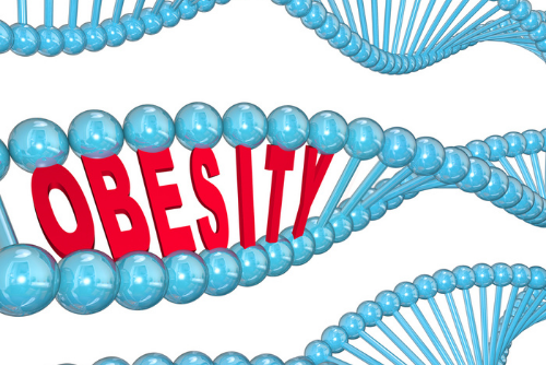 What is Genetic Obesity