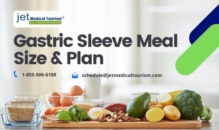 Gastric Sleeve Meal Size Plan